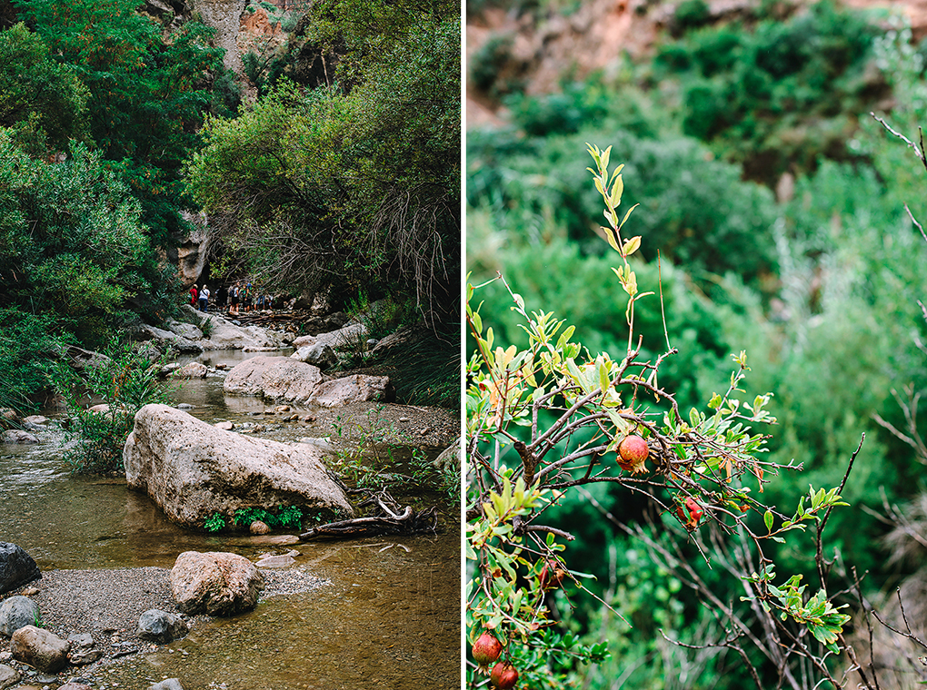 Alpujarra-almeriense-Fotografia-Luisa-Morón